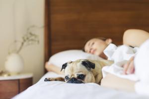 Sleep Better With Nap