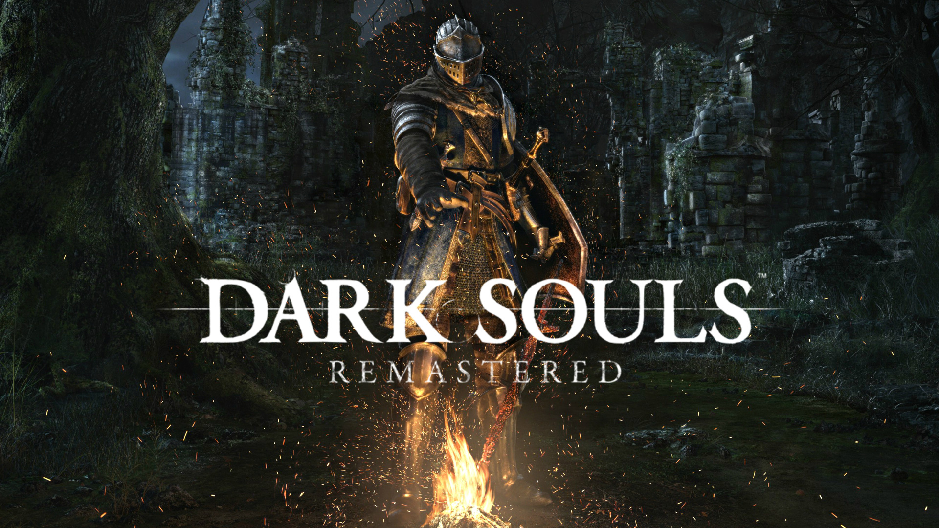 Dark Souls Remastered PS4 vrplayer.fr
