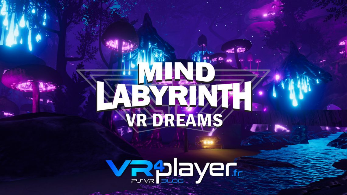 Mind Labyrinth VR Dreams sort sur PSVR vr4player.fr
