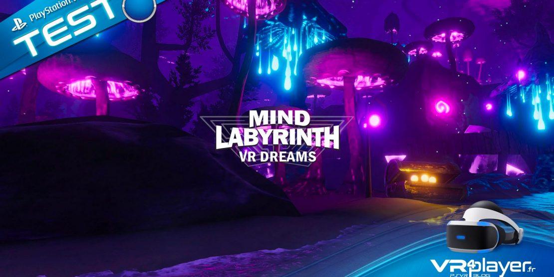 PlayStation VR : Mind Labyrinth VR Dreams, Le Test Zen sur PSVR