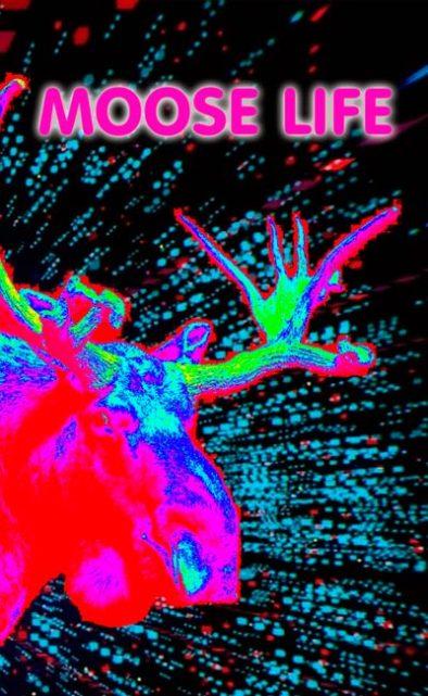 Moose Life PlayStation VR PSVR VR4player Vignette