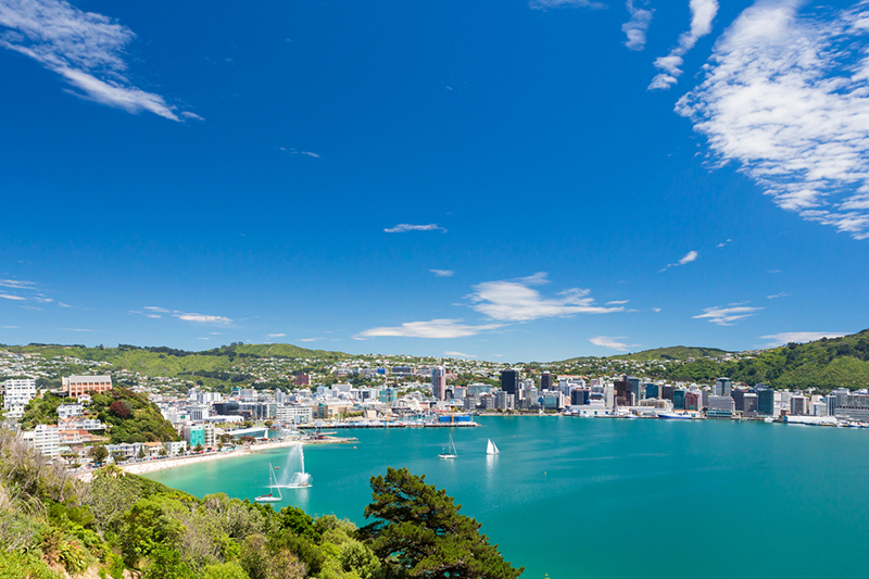 Wellington bay and harbour