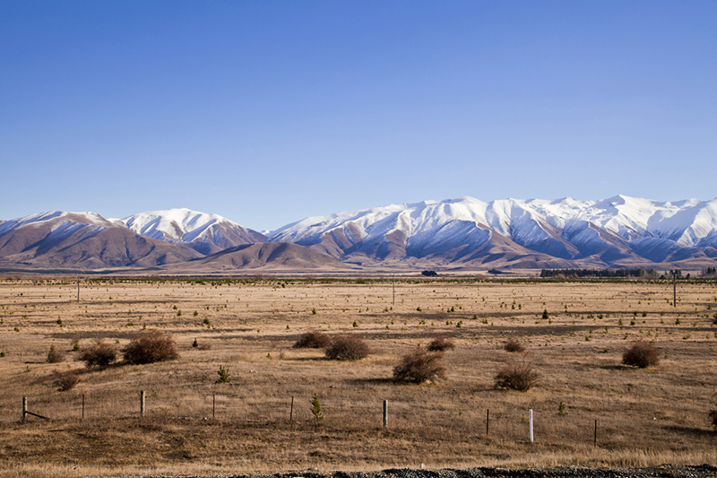 Empty field with mountain range in background in Central Otago, New Zealand.