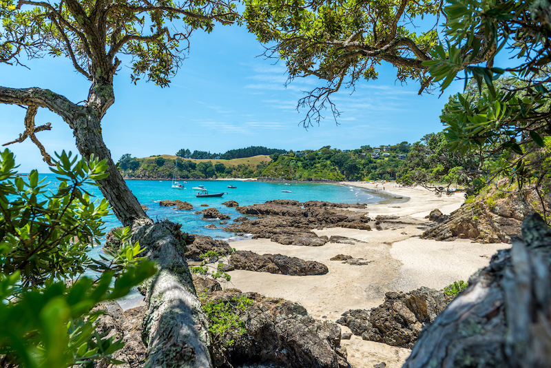 A secluded beach on Waiheke Island, New Zealand, surrounded by trees and rocks.