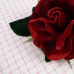 Velvet Rose in Rich Red