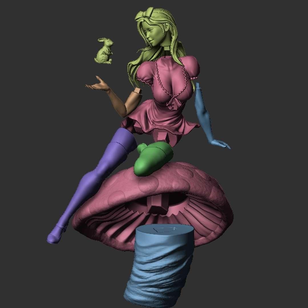 Alice with Rabbit  - STL ready for printing  Alice in Wonderland with Rabbit in Hand. - Os melhores arquivos para impressão 3D do mundo. Modelos stl divididos em partes para facilitar a impressão 3D. Todos os tipos de personagens, decoração, cosplay, próteses, peças. Qualidade na impressão 3D. Modelos 3D com preço acessível. Baixo custo. Compras coletivas de arquivos 3D.