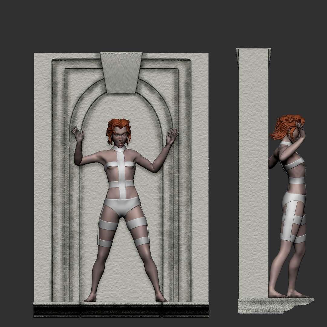 Leeloo - Fifith Element - 1:6 scale model. the figure is cut in an intuitive way, final slicing adjustments made by the buyer to have a better fit in the 3d printing you have. - Os melhores arquivos para impressão 3D do mundo. Modelos stl divididos em partes para facilitar a impressão 3D. Todos os tipos de personagens, decoração, cosplay, próteses, peças. Qualidade na impressão 3D. Modelos 3D com preço acessível. Baixo custo. Compras coletivas de arquivos 3D.