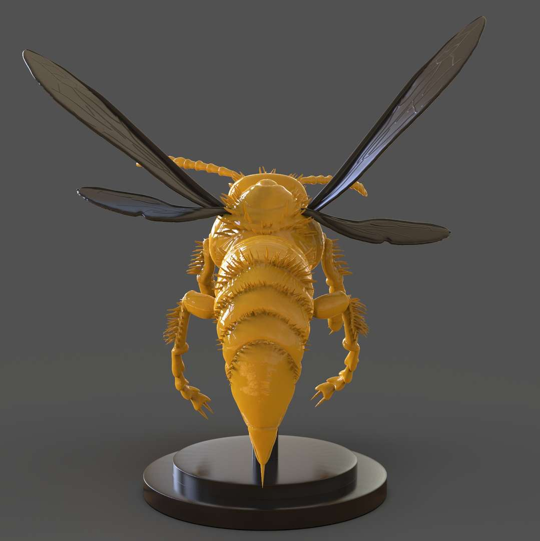 Murdering Asian Hornet Sculpture - A Murdering Asian Hornet Sculpture ready for 3D Print I separate each part for easy 3D Print if you need 3D Game Assets or Stl files I can do commissions works.   - The best files for 3D printing in the world. Stl models divided into parts to facilitate 3D printing. All kinds of characters, decoration, cosplay, prosthetics, pieces. Quality in 3D printing. Affordable 3D models. Low cost. Collective purchases of 3D files.
