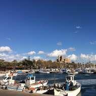 public://mallorca-puerto.jpg