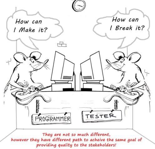 programmer and QA engineer