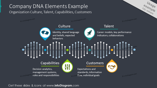 Company DNA chart illustrating company's culture and customers