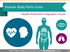 Human Body Parts Organs Infographics (PPT Icons)
