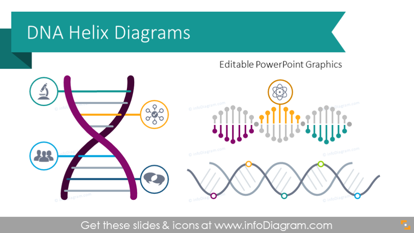Company DNA Helix Diagrams (PPT Template)