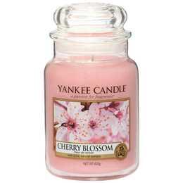 YANKEE CANDLE Cherry Blossom Duftkerze (Fruchtig, Blumig, Kirschblüte, 1 Stück)