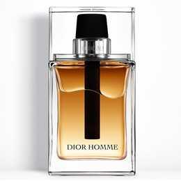 DIOR Homme (100 ml, Eau de Toilette)