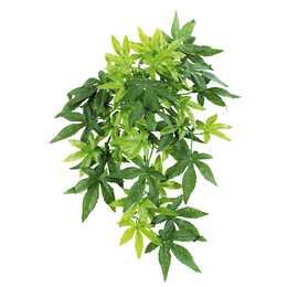 AMAZONAS Repti Fantasy Plant (60 cm)