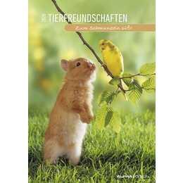 ALPHA Wandkalender Tierfreundschaftern 2020