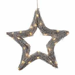 DAMECO Étoile de Noël