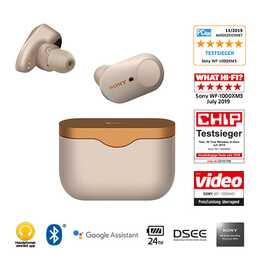 SONY WF-1000XM3S (Earbud, Bluetooth 5.0, Silber)
