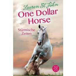 Stürmische Zeiten (One Dollar Horse 03)
