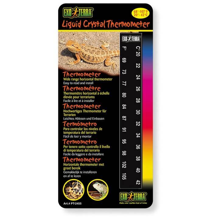 ExoTerra Repti LCD Thermometer