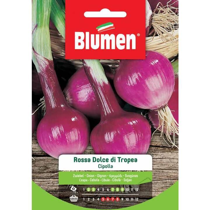 BLUMEN Oignon Rossa di Tropea (5 g)