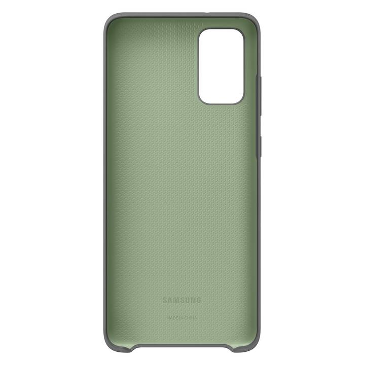 SAMSUNG Backcover Hard Cover (Galaxy S20+, Grau)