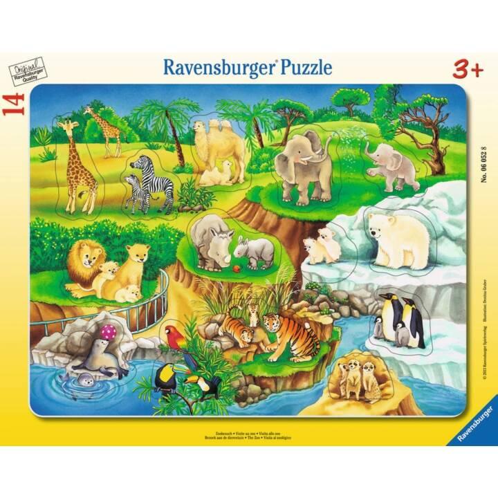 RAVENSBURGER zoo visitare puzzle visita zoo