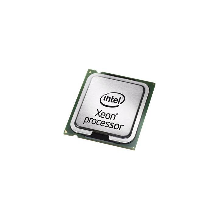 INTEL Xeon E3-1565LV5, 2.5 GHz, Prozessor