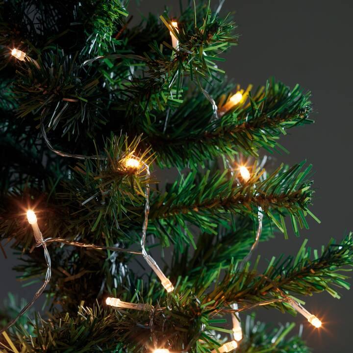INTERTRONIC LED Lichterkette