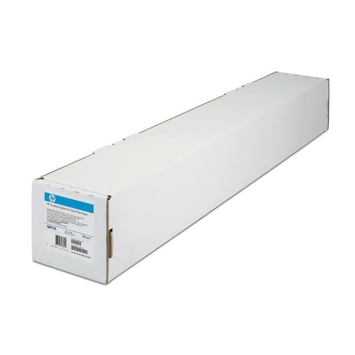 HP Q8922A Fotopapier (106,7 cm x 30,5 m)