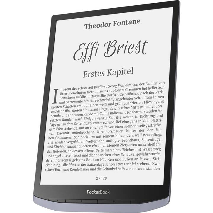 "POCKETBOOK InkPad X (10.3"", Metallic, WLAN, Bluetooth, 32 GB)"