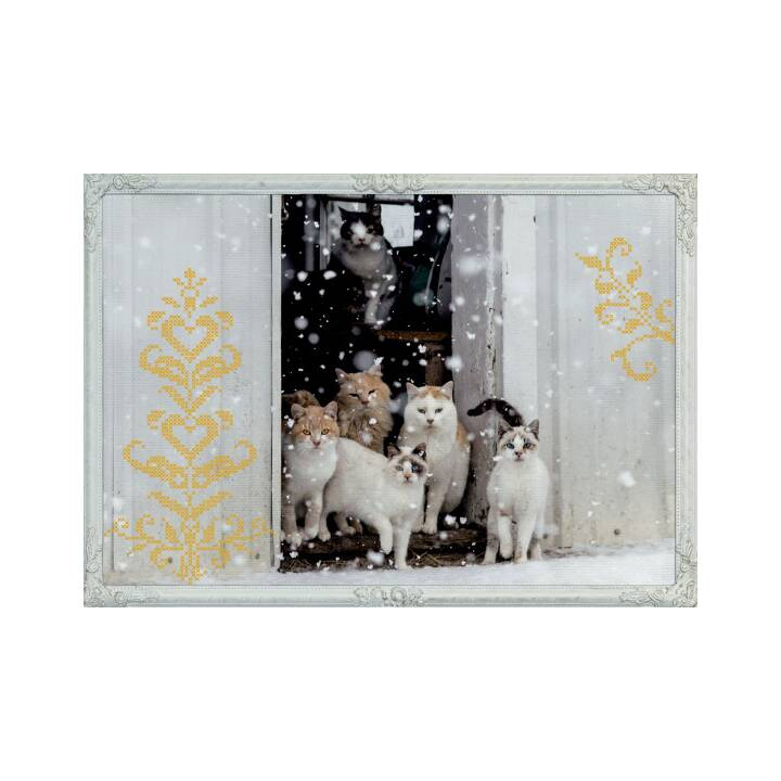 COPPENRATH Calendario dell'Avvento 42x29,7cm gatti inverno sogni d'inverno