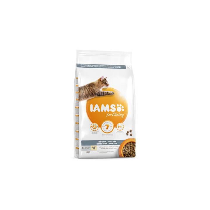 IAMS Trockenfutter (Adult, 10 kg)