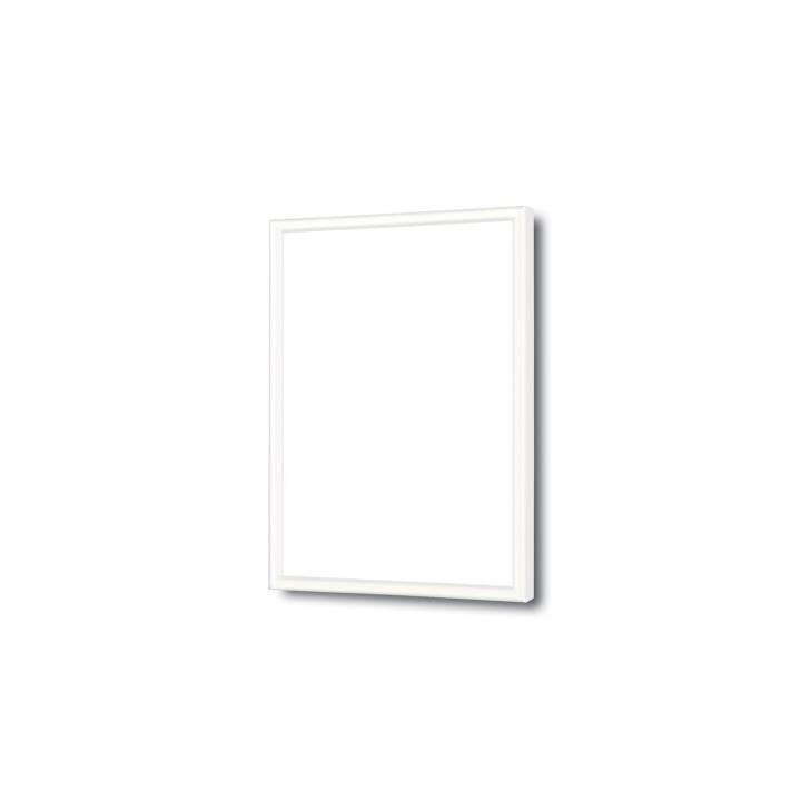 DEBEX cadre amovible 21 x 29,7 cm plastique blanc
