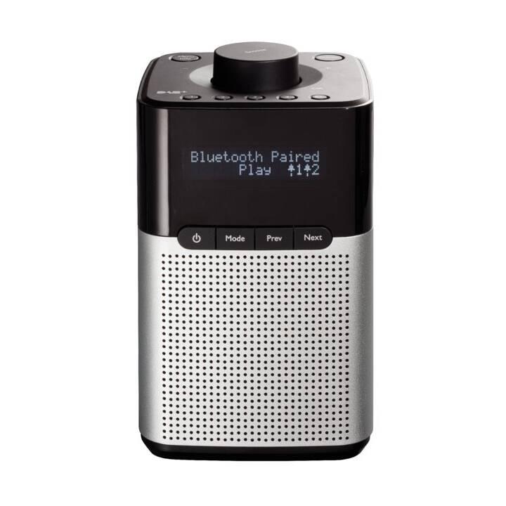 INTERTRONIC RA-26 Radio digitale (Nero, Argento)