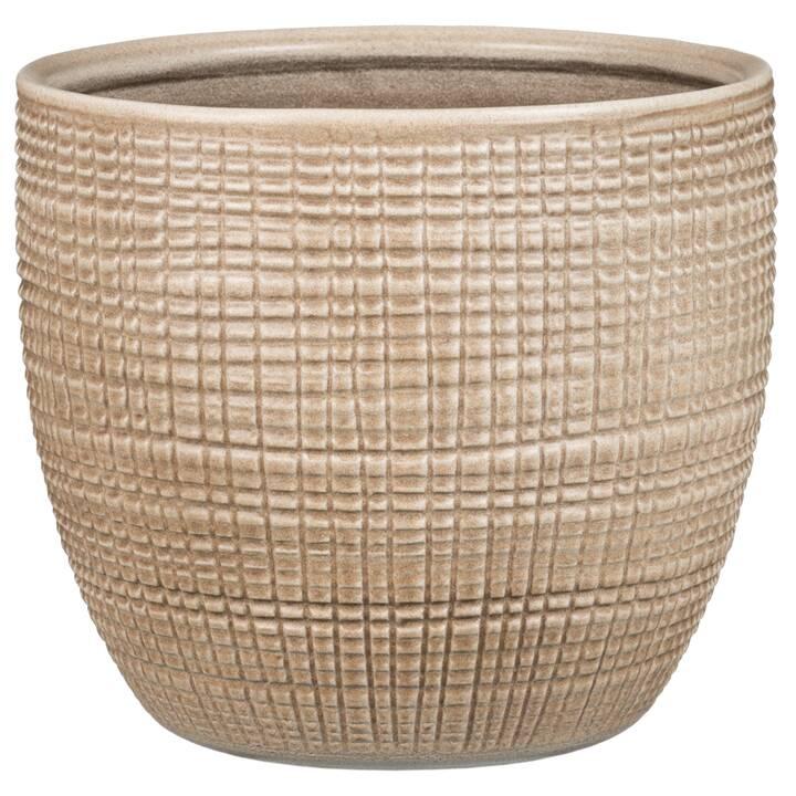 SCHEURICH Vaso da piante (2.6 l, 14 cm x 16 cm)
