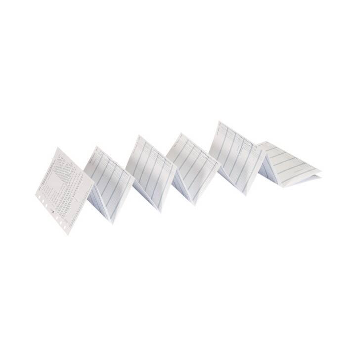 SUCCES Ersatzpapier Standard (1 Stk)
