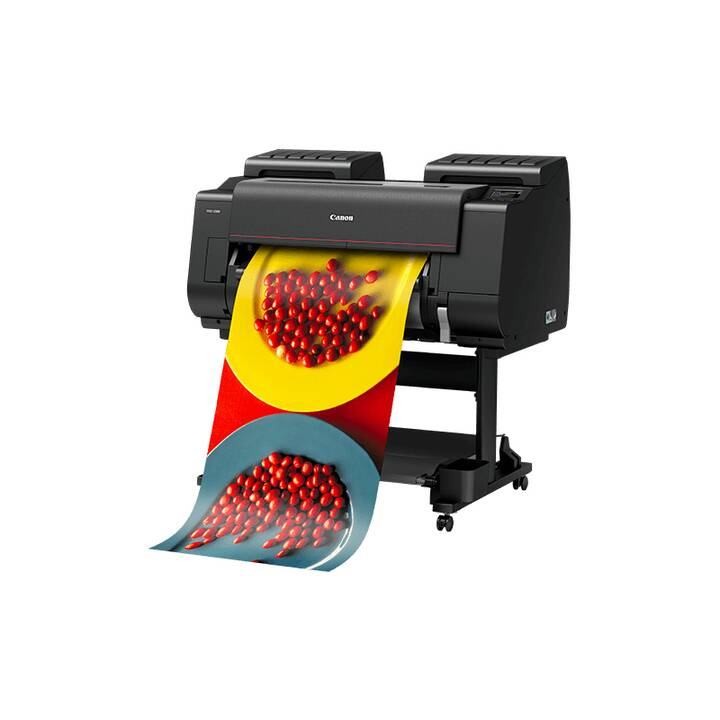 CANON imagePROGRAF PRO-2100 Grossformatdrucker (2400 x 1200 dpi)