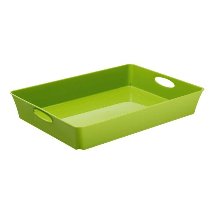 ROTHO Storage Box Box Living Box C4