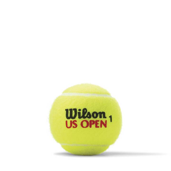 WILSON Palle da tennis US Open Swiss
