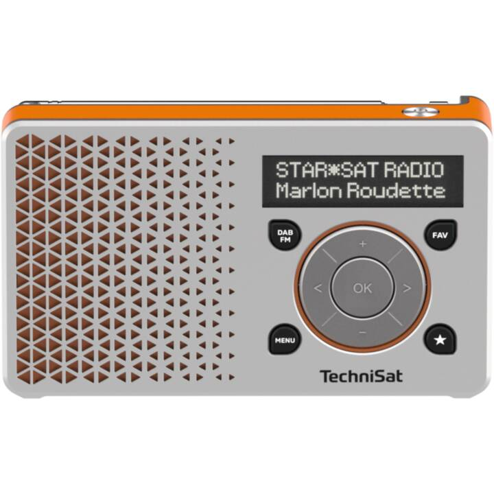 TECNISAT DigitRadio 1