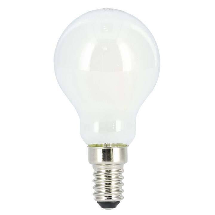 XAVAX Ampoule LED (E14, 2.5 W)