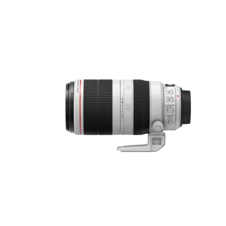 CANON EF 100 - 400mm f/4.5 - 5.6L IS II USM