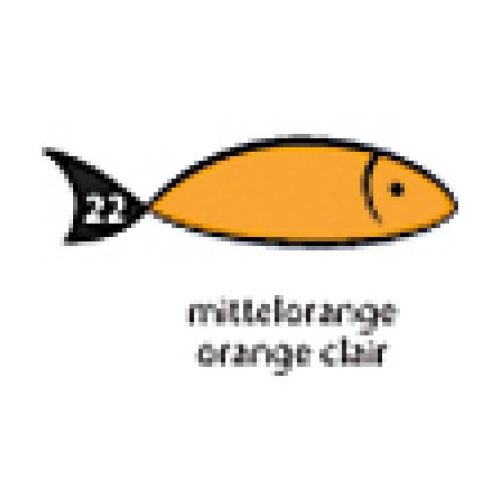 PAPYRUS Carta arcobaleno A4 160g arancione 160g 250 fogli