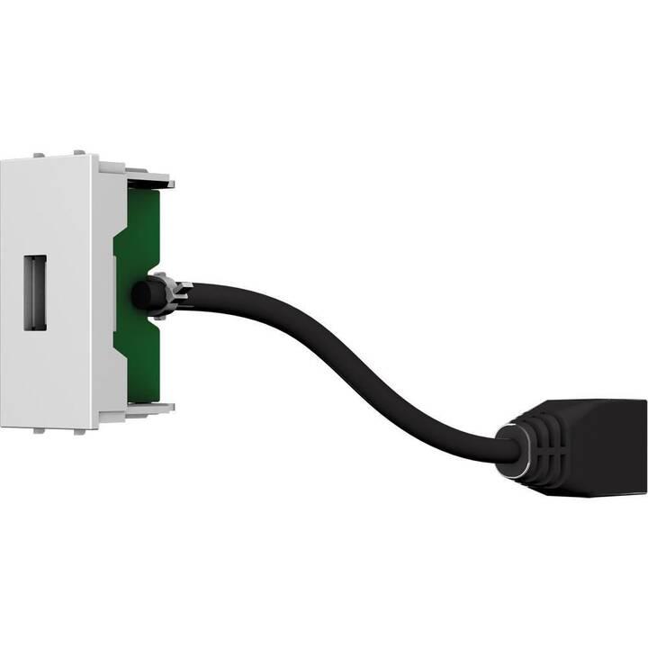 CECONET Dosen/Schalter  AVM-1008  (1 Stück)