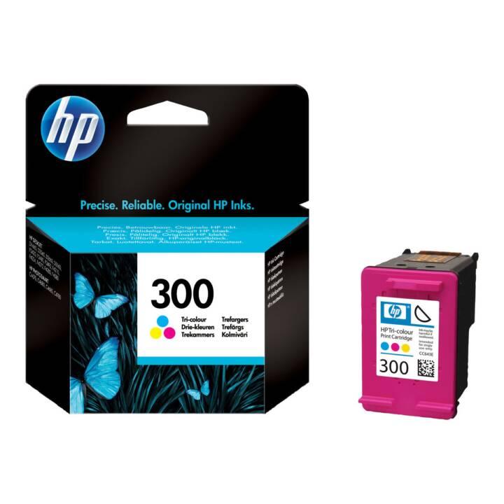 HP 300