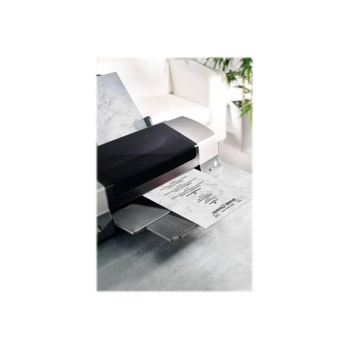 SIGEL Cartes en blanc (Universel, A4, Multicolore)
