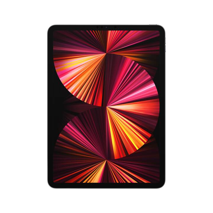 """APPLE iPad Pro WiFI 2021 (11"""", 256 GB, Space Grau)"""