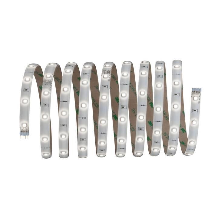 PAULMANN YourLED LED-Stripe (3 m)